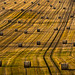Bales - and more bales. by AlbOst