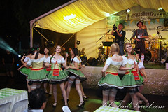 carnival(0.0), samba(0.0), musical theatre(0.0), event(1.0), folk dance(1.0), dance(1.0),