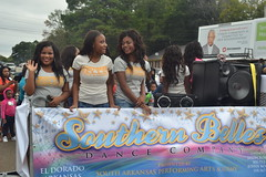500 Southern Belles