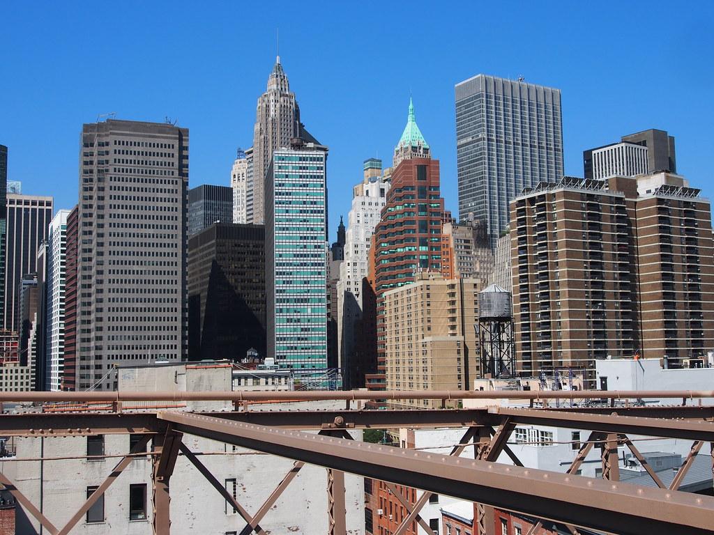 New York (499)