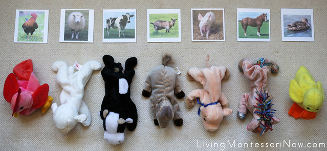 Farm Animal Matching Layout