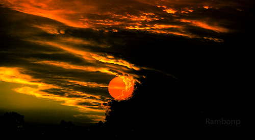 trees sunset red wallpaper sky orange sun mountains nature silhouette yellow clouds canon landscape golden evening twilight paradise sundown crop punjab chandigarh sukhnalake dimness touristplace goldenblue