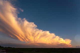 Updraft cloud at sunset