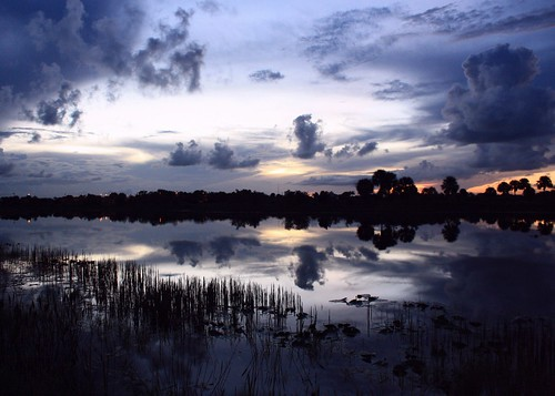sunset usa reflection nature beauty landscape still unitedstates florida naturallight calm bluehour tranquil cloudscape southflorida sawgrass lakescape sunsetphotography bocaratonflorida palmbeachcountyflorida steelwater quartasunset238
