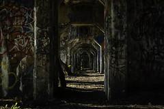 Forbidden Arch