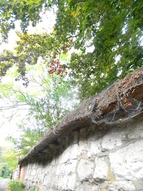 Thatched wall, Blewbury