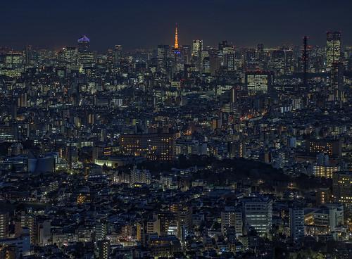 Tokyo 3297