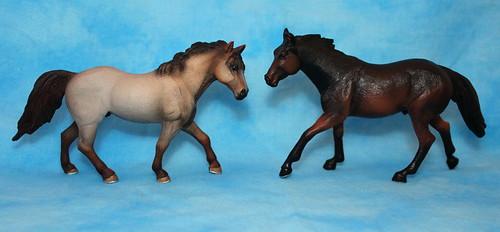 Walkaround of the Mojo Fun Sooty Bay Quarter Horse Stallion 15336306905_c4fb7901c1