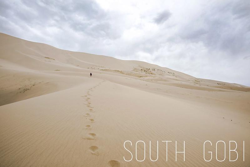 Khongoriin Els sand dune, south Gobi desert
