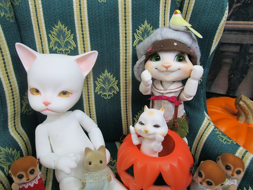 Baha&mini scon&Family