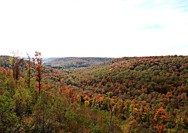 Autumn from Kinzua Bridge