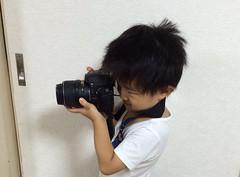 デジイチで撮るとらちゃん 2014/9