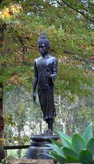 standing dark buddha statue