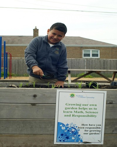Academy for Global Citizenship student at work in the school garden.