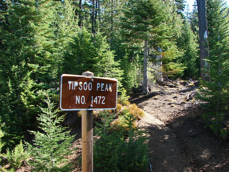 Tipsoo Peak Trailhead