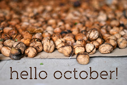 hello_oktober_2014
