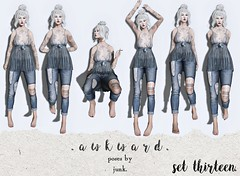 . a w k w a r d . poses. set thirteen.