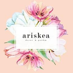 Ariskea 2017