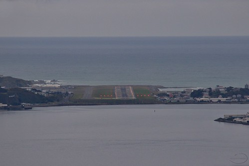 <p>Wellington Airport</p>