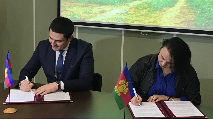 Краснодарский край вошёл в федеральный проект «Гастрономическая карта России»