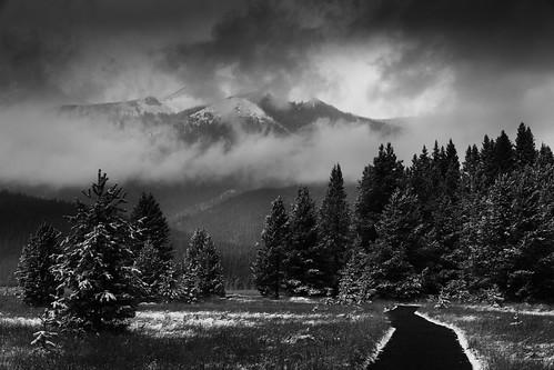 estespark colorado unitedstates bw blackandwhite coyotevalleytrail rockymountainnationalpark rmnp nationalpark usa us travel canon canon70d canon1585 lightroom silverefexpro landscape trail mountain snowstorm lowkey