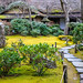 Small photo of Okochi Sanso moss garden