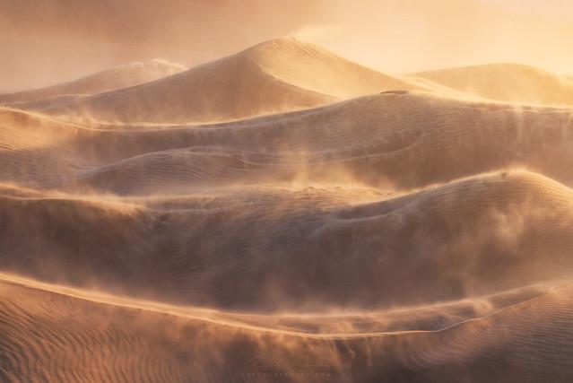 Dunesday