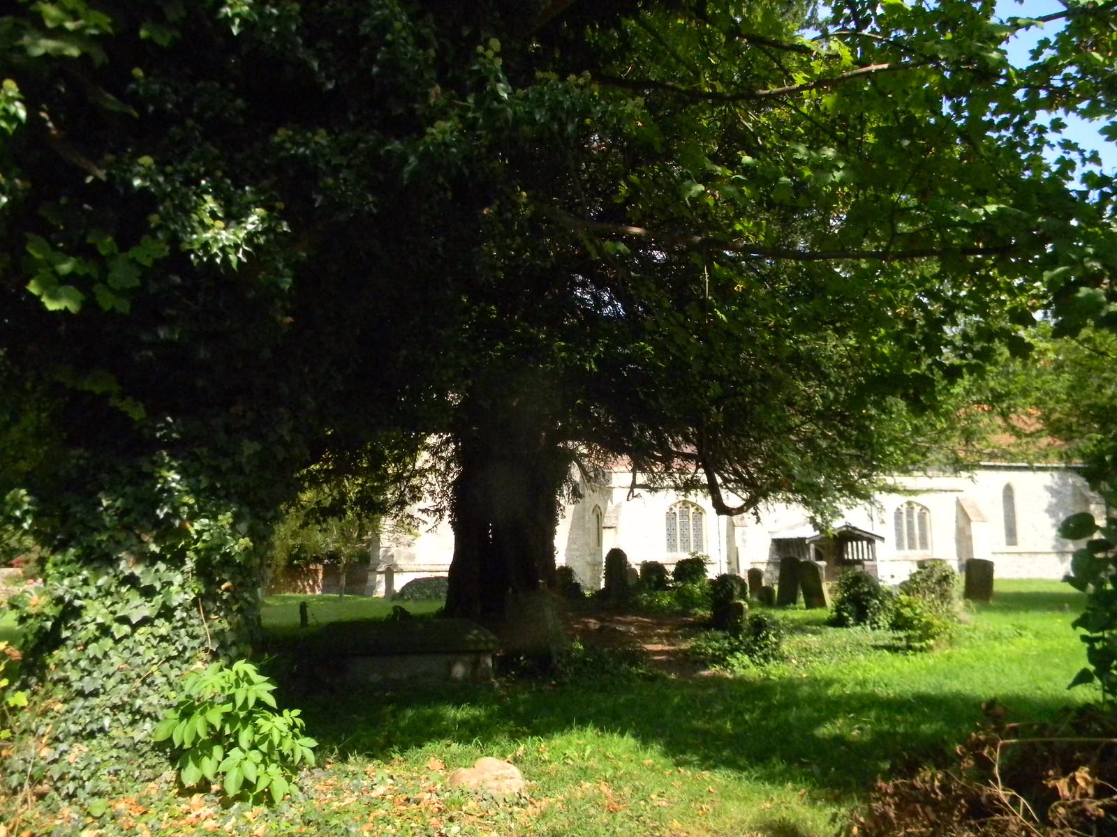 Churchyard, Blewbury Cholsey to Goring