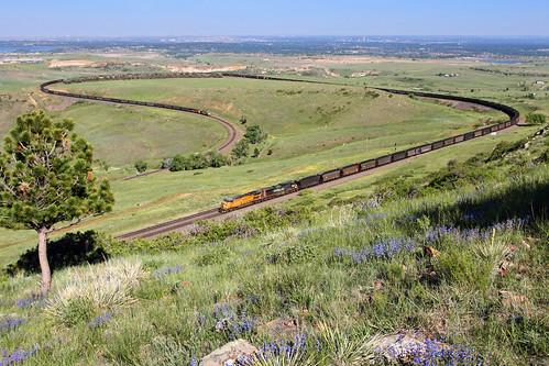 railroad up train colorado clay co unionpacific wildflowers plains ge springtime coaltrain dpu eisele ac4400cw unittrain big10curve moffattunnelsubdivision