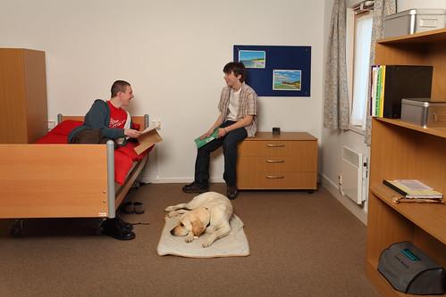 UWE-StudentAccommodation
