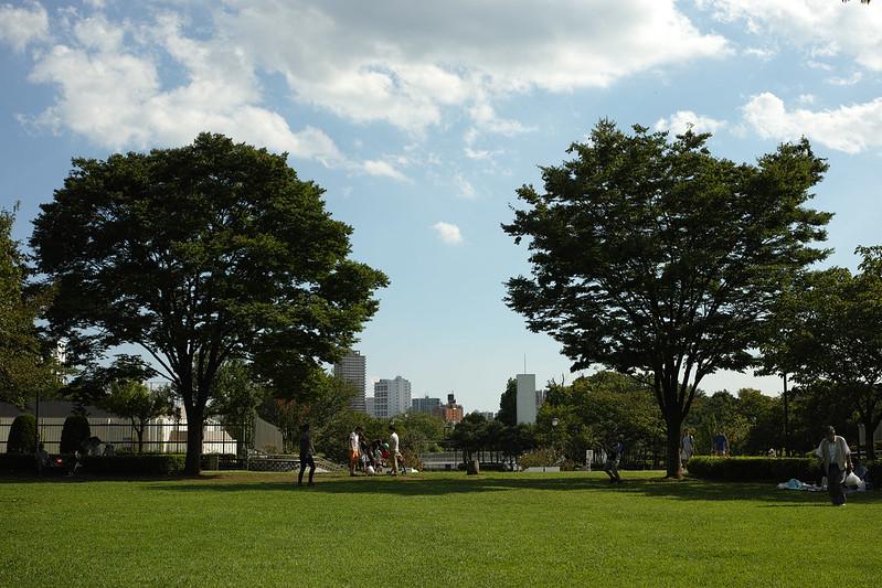 晴れた公園