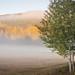 Morning mist by Andreas Øverland