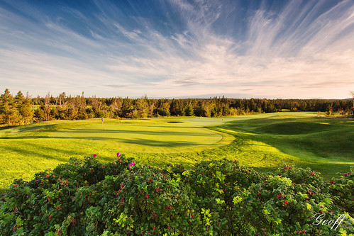 travel 2 3 canada green tourism nature wet colors sunrise newfoundland golf landscapes hole 14 stjohns course dew golfing 17 nl 18 clovelly moisture osprey golfscapes