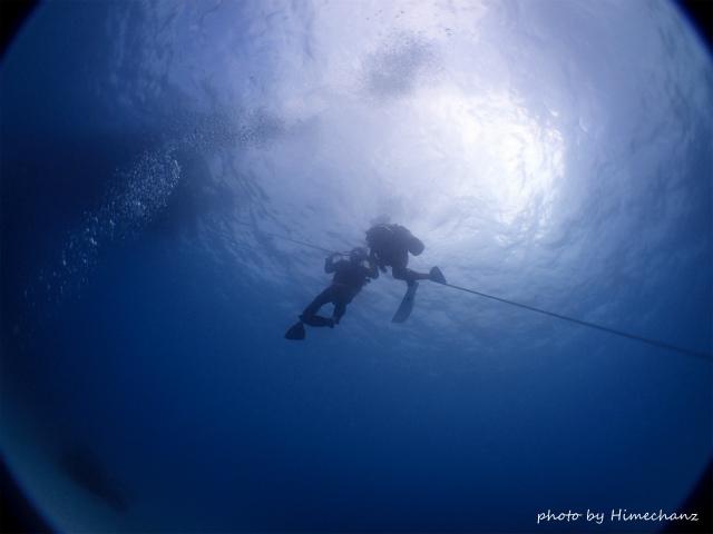 体験ダイビングのTさん、頑張って潜ろうとするも、どうしても怖くて断念。。