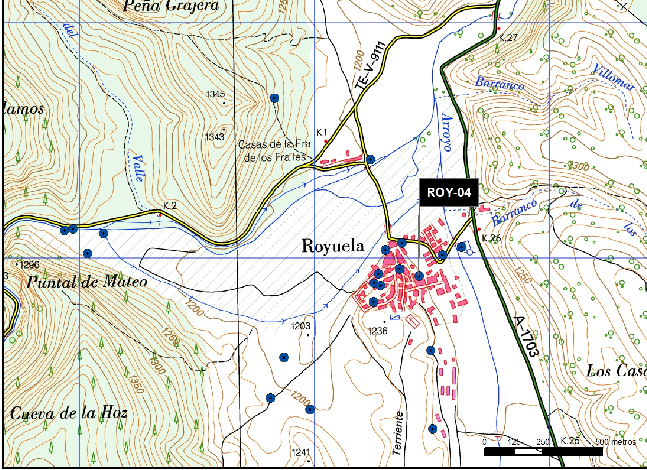 ROY_04_M.V.LOZANO_ DOS CHORROS_MAP.TOPO 2