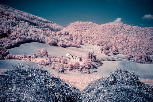 longexposure italien trees summer italy landscape ir fotograf infrared fujifilm marche semester 2014 falsecolour r72 fossombrone xpro1 hoyairfilter fujinonxf35mm martinmartinsson invertedcolorchannels