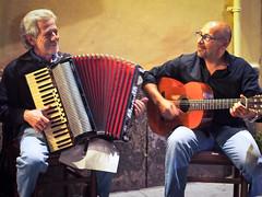 accordion, string instrument, musician, folk instrument, music, garmon, guitarist,