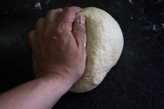 Pamburguesa (6)