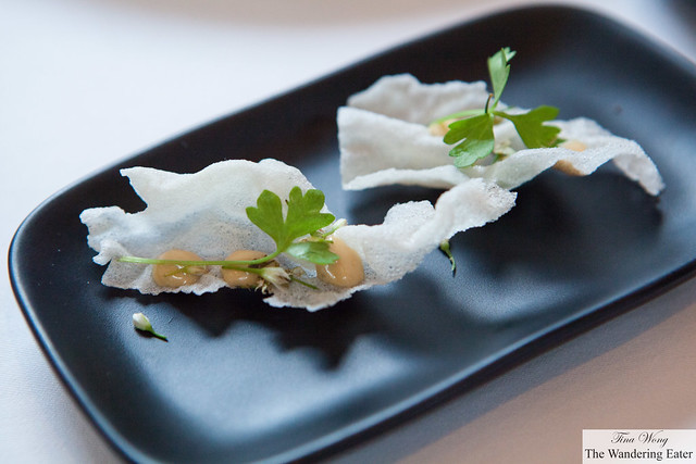 Rice chips with anchovy mousse