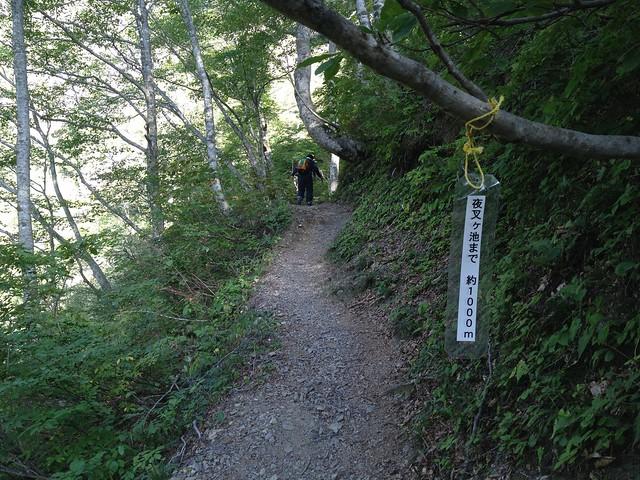 夜叉ヶ池 登山道 夜叉ヶ池まで1,000m地点