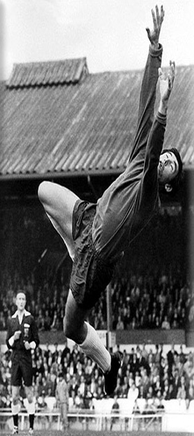 picture of Gordon Banks - Stoke City - 1967 to 1972