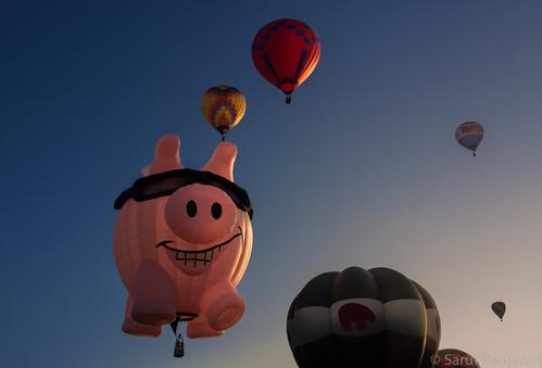 red sky sunlight sunrise pig fly balloon launch flyingpig planoballoon