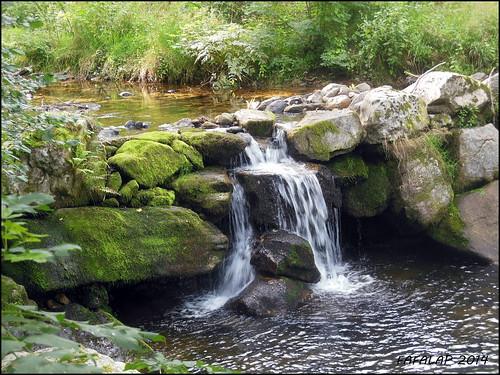 eau cascade rocher verdure mousse ardèche ruisseau letalaron