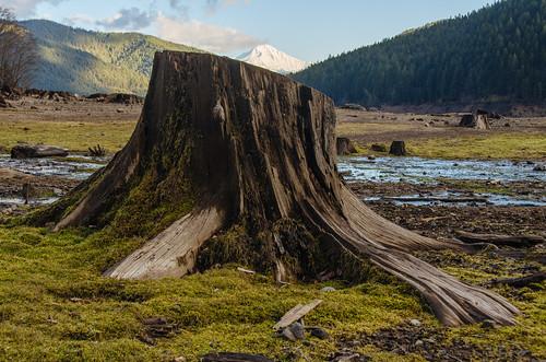 mountain lake oregon unitedstates detroit reservoir mtjefferson detroitlake lowwaterlevel