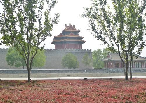 Beijing-Cité interdite-Autour-j2 (17)