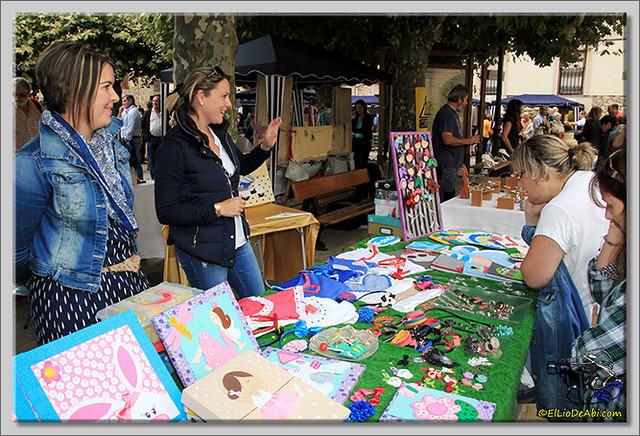 Encantapájaros y Feria de Oña 2014 (13)
