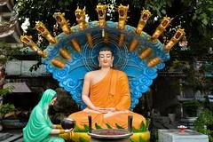 Buddah receives an offer