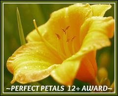 12+ Award2