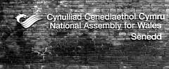 Welsh National Assembly Cardiff Bay #dailyshoot #leshainesimages