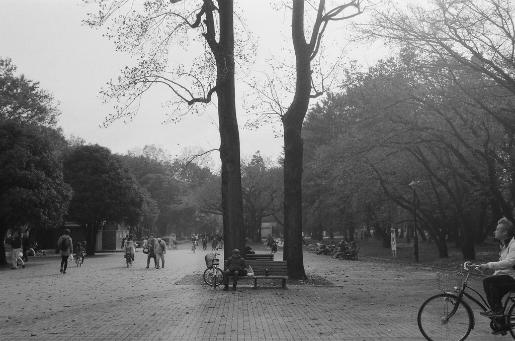 光が丘 Tokyo, Japan / Ultrafine Extreme / Nikon FM2 另外一邊的大樹,一樣也是坐著一個人,畫面中騎腳踏車的阿伯應該要在等他過來一點再拍。  突然想起來一件事情,那時候去東京逛市集的時候,剛好是攝影社人像課程的前幾天。那時候還沒有把簡報整理好,一直在想說該如何去介紹、表達拍人像的過程。所以在東京的街頭走路時,腦袋裡還是不斷的轉這些事情。  好像越拿手的事情就越不知道該如何去表述,或是其實也沒那麼拿手,只是每次都運氣好而已吧。  沒辦法拍人像的時候都在拍什麼,就拍街頭攝影!  Nikon FM2 Nikon AI AF Nikkor 35mm F/2D Ultrafine Extreme 400 9084-0015 2016/11/20 Photo by Toomore